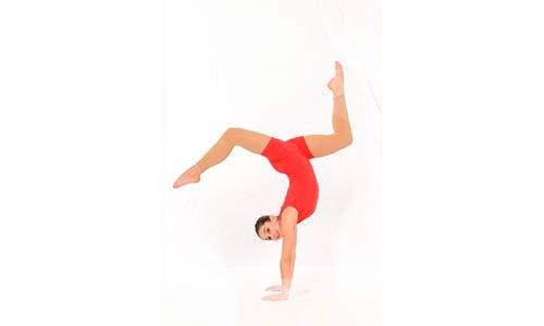 new acrobatic artsw 1